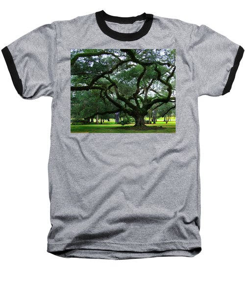 The Old Oak Baseball T-Shirt by Perry Webster