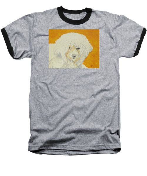 The Old Poodle Baseball T-Shirt by Hilda and Jose Garrancho