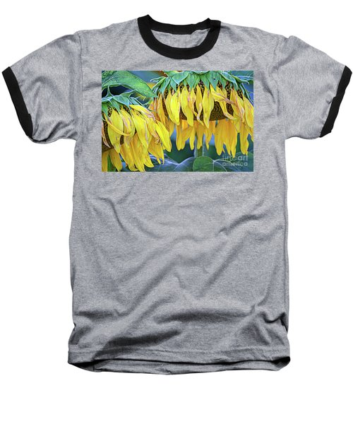 The Old Sunflowers Baseball T-Shirt