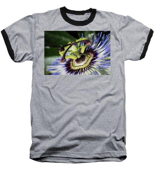 The Passion Baseball T-Shirt