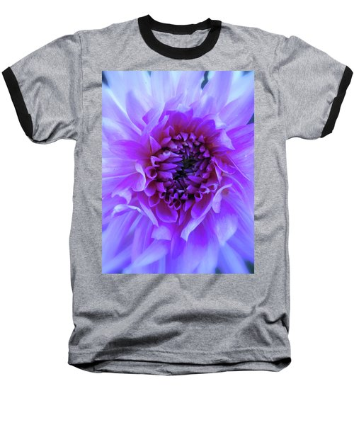 The Passionate Dahlia Baseball T-Shirt