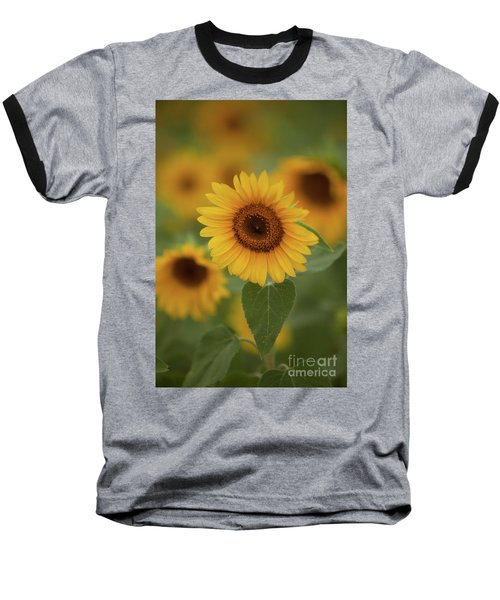 The Patch Of Sunflowers Baseball T-Shirt