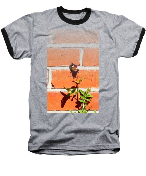 Baseball T-Shirt featuring the photograph The Poetry Of Ordinary Things by Ivana Westin