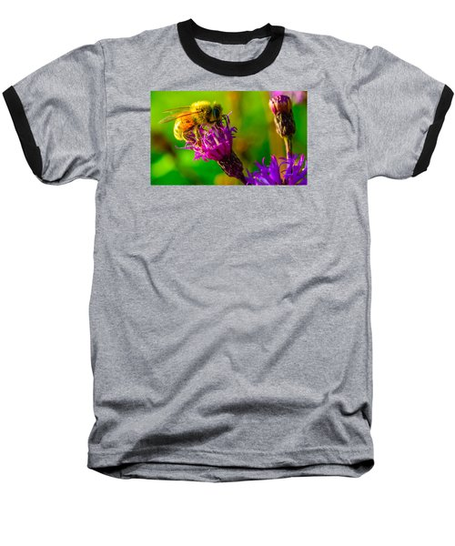 The Pollinator 2 Baseball T-Shirt