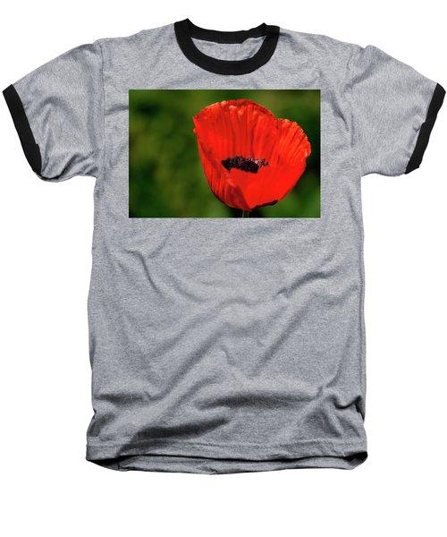 The Poppy Next Door Baseball T-Shirt