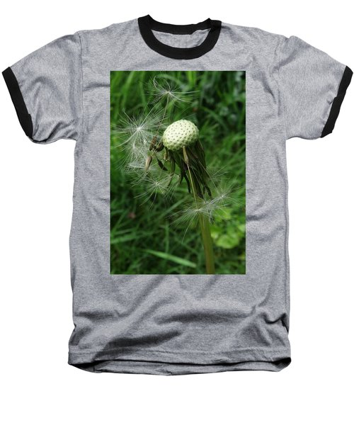 The Promise Of Renewal 1 Baseball T-Shirt by I'ina Van Lawick