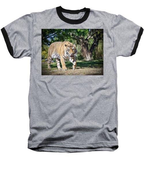 The Prowler Baseball T-Shirt