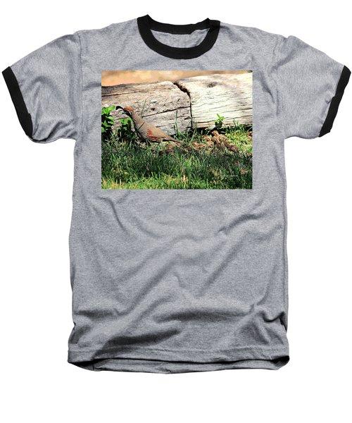 The Quail Family Baseball T-Shirt