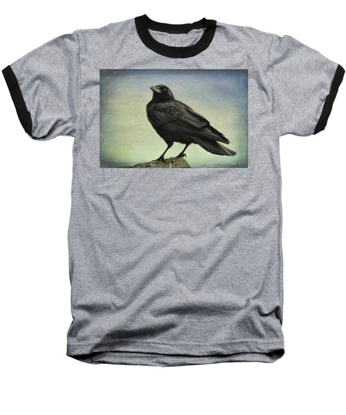 The Raven - 365-9 Baseball T-Shirt
