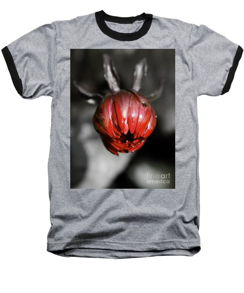 The Red Dahlia Baseball T-Shirt