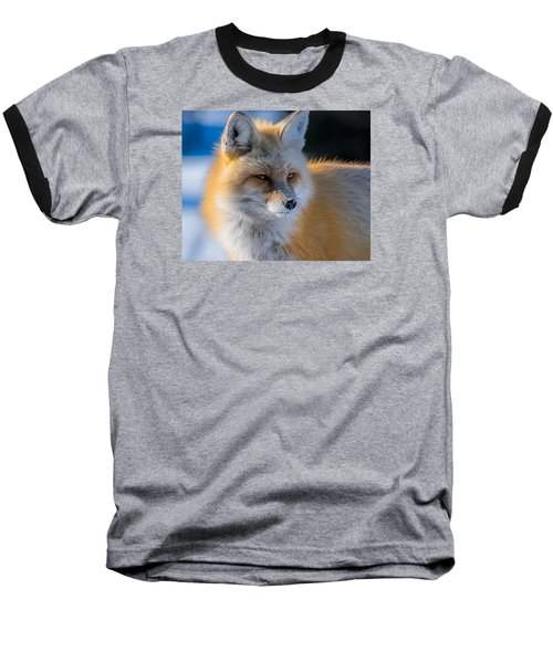 Baseball T-Shirt featuring the photograph The Red Fox Portrait In Snow by Yeates Photography
