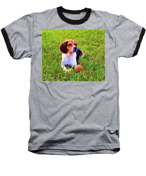 The Reserved Beagle Baseball T-Shirt