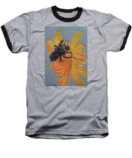 The Resting Place Baseball T-Shirt by Anita Putman
