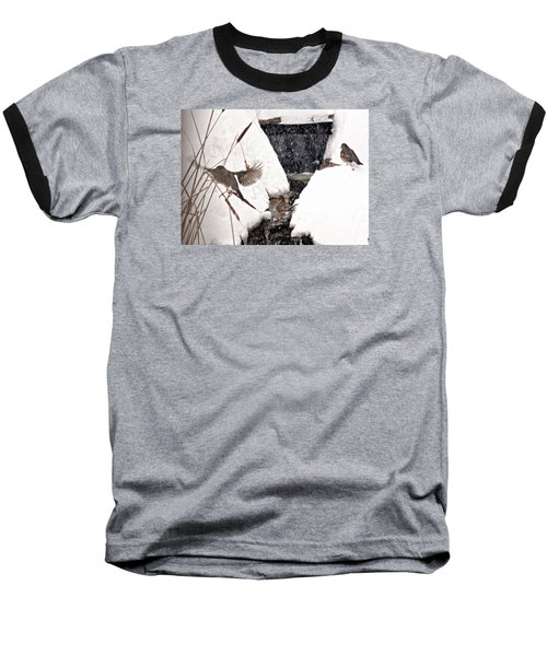 Baseball T-Shirt featuring the photograph The Robin Plunge by Trina Ansel