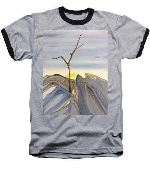 The Rock Garden Baseball T-Shirt by Pat Purdy