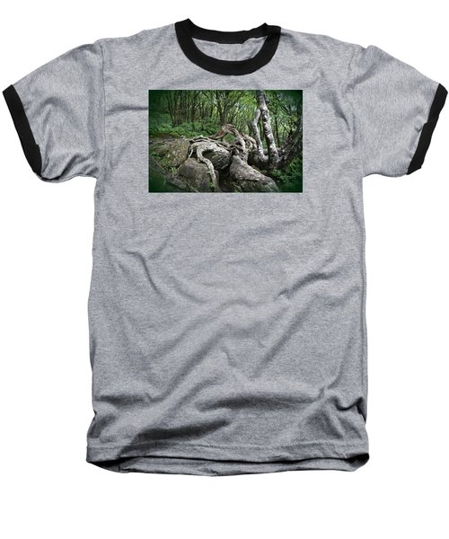 The Root Baseball T-Shirt