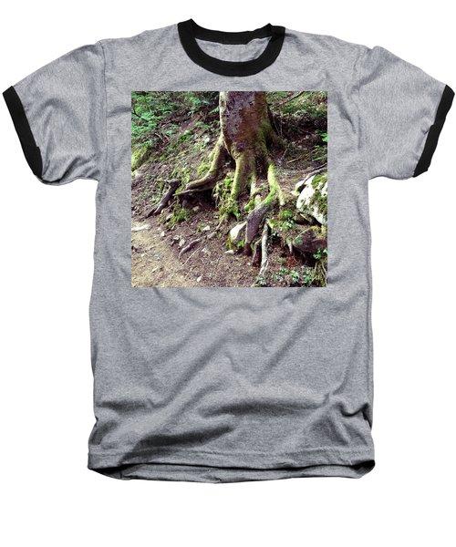 The Root Of The Matter Baseball T-Shirt