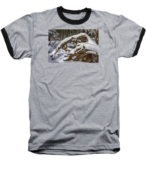 The Roots Of Winter Baseball T-Shirt by Mitch Shindelbower