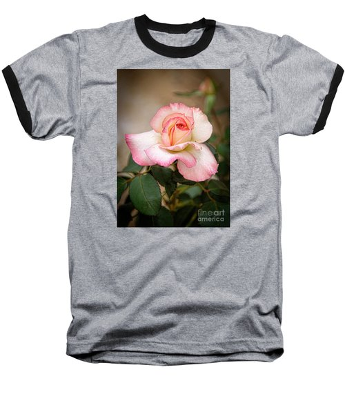 The Rose Baseball T-Shirt by Janice Rae Pariza