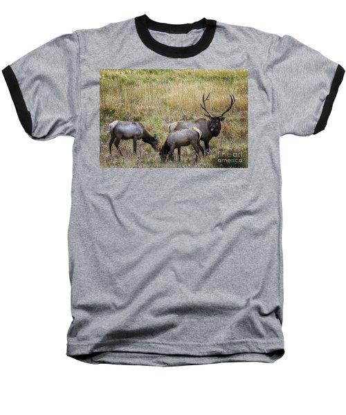 The Rut Baseball T-Shirt