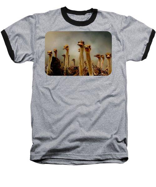 The Savannah Gang Baseball T-Shirt by Linda Koelbel