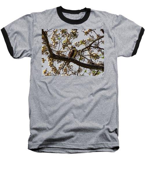 The Sea Eagle Baseball T-Shirt