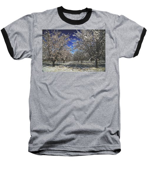 The Season Of Us Baseball T-Shirt by Laurie Search