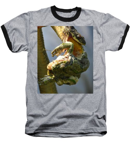 The Serpent And The Frog Baseball T-Shirt by Lisa DiFruscio