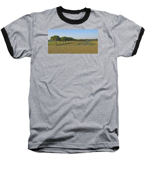 The Source Of Pine Nuts  Baseball T-Shirt by Allan Levin