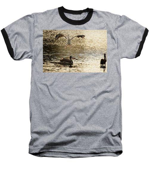 The Spot-billed Pelican Or Grey Pelican  Pelecanus Philippensis  Baseball T-Shirt