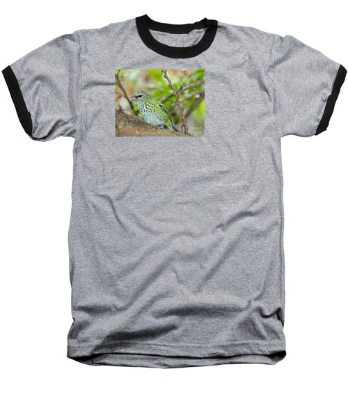 Baseball T-Shirt featuring the photograph The Spotted Tanager by Judy Kay
