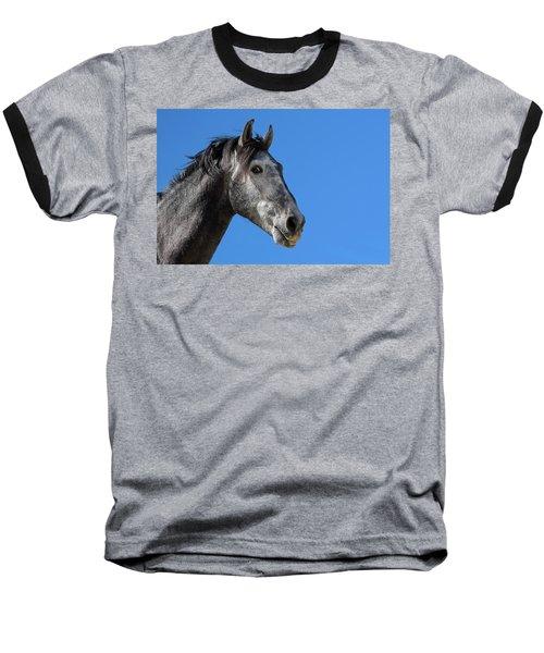 The Stallion Baseball T-Shirt