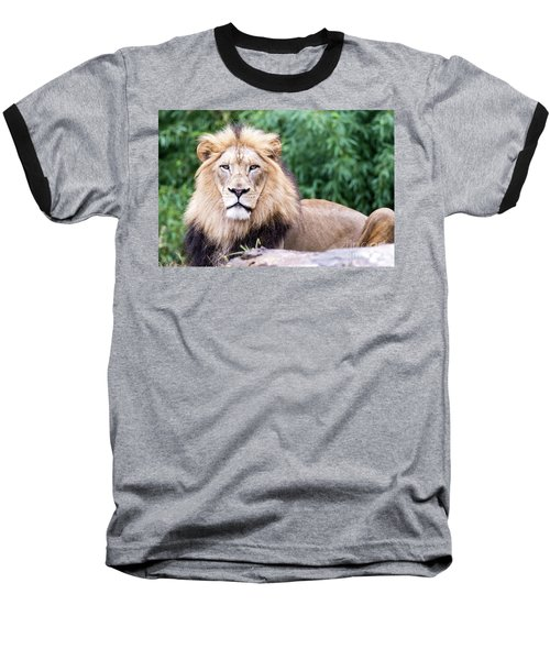 The Stare Down Baseball T-Shirt