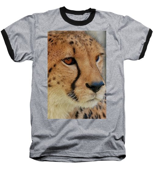 The Stare Baseball T-Shirt