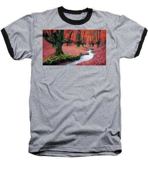 The Stream Of Life Baseball T-Shirt