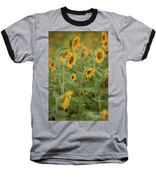 The Sunflower Patch Baseball T-Shirt