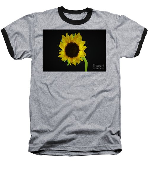 The Sunflower Baseball T-Shirt by Ray Shrewsberry