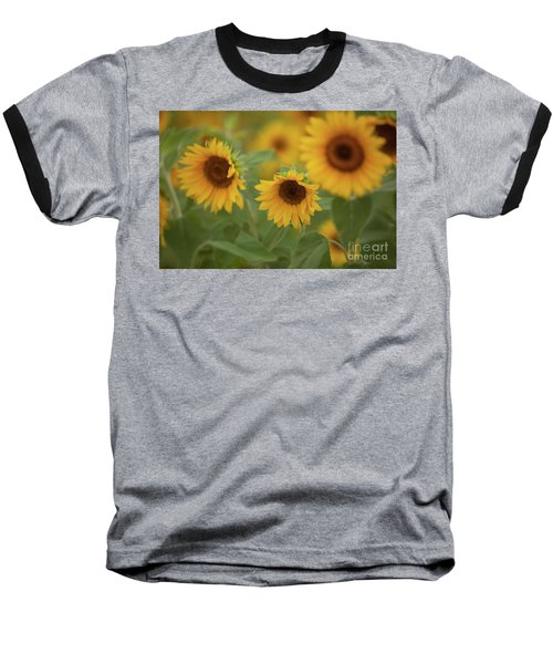 The Sunflowers In The Field Baseball T-Shirt