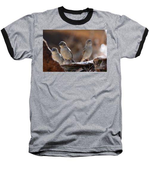 The Three Musketeers Baseball T-Shirt