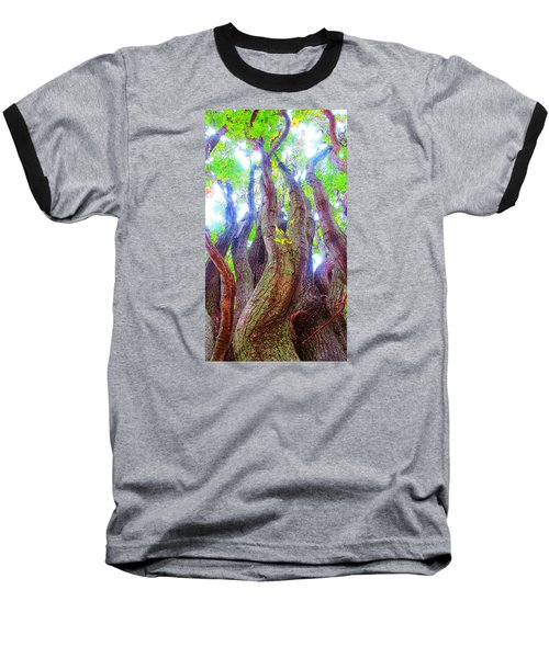 Baseball T-Shirt featuring the photograph The Tree Of Salem by Patricia Arroyo