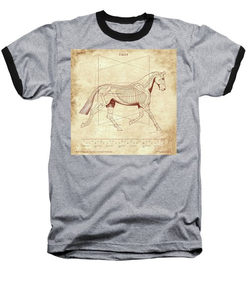 The Trot - The Horse's Trot Revealed Baseball T-Shirt by Catherine Twomey