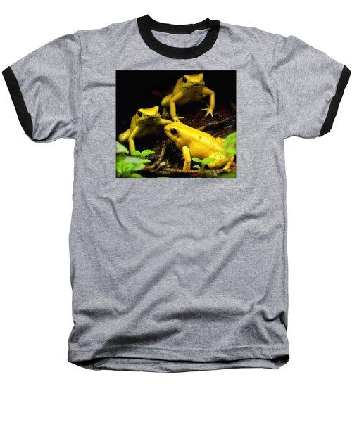 The Untouchables Baseball T-Shirt by David Gilbert