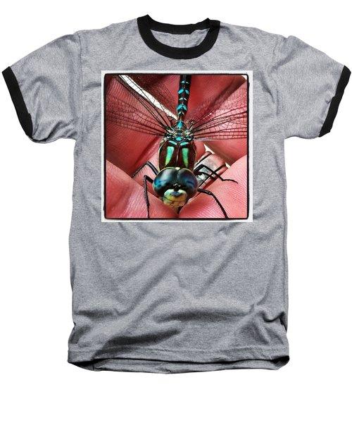 The Visitor Baseball T-Shirt by Karl Reid