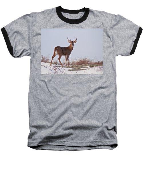 The Watchful Deer Baseball T-Shirt by Nancy De Flon