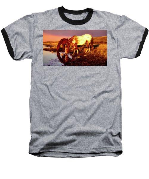 The Watering Hole Baseball T-Shirt