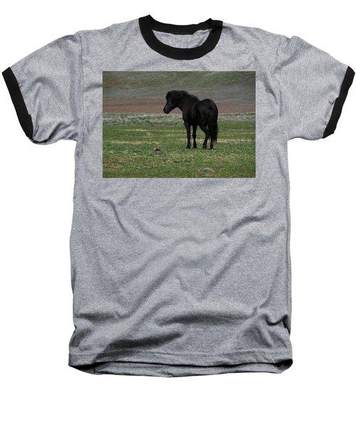 The Wild One Baseball T-Shirt