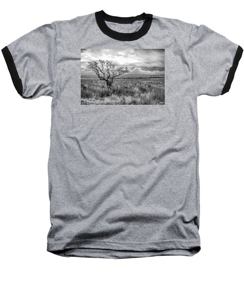 The Windswept Tree Baseball T-Shirt
