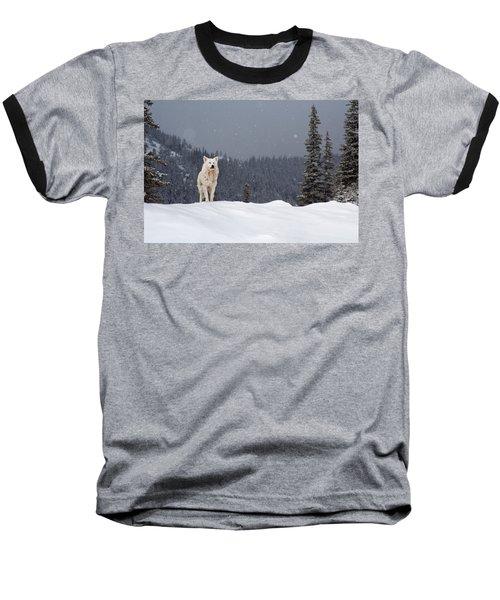 The Wolf Baseball T-Shirt