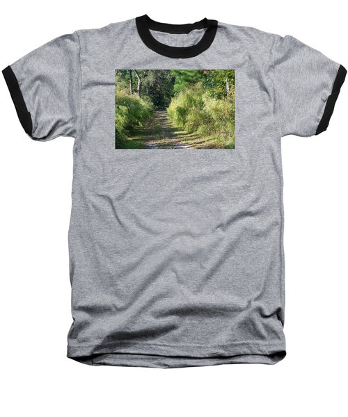 The Yellow Trail Baseball T-Shirt by Kenneth Albin