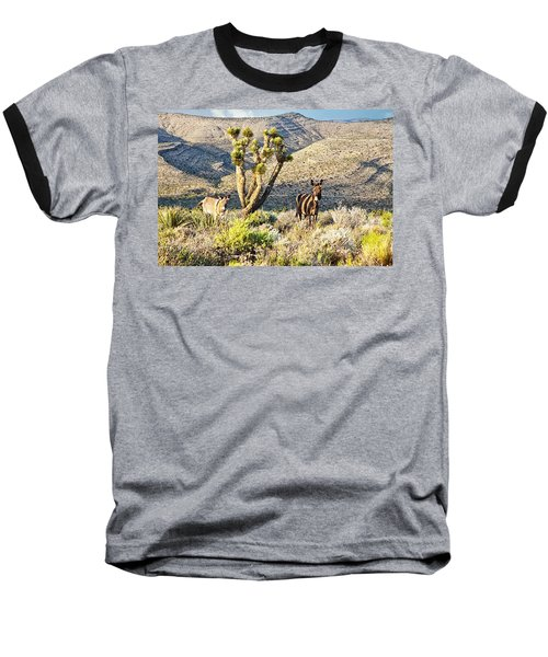 The Zebra Burro Baseball T-Shirt